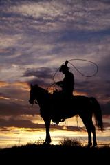 Fototapete - Cowboy on horse swinging rope