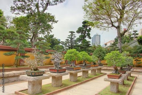 Jardin de bonsai hong kong photo libre de droits sur for Jardin hong kong