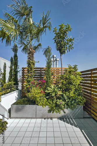 piante sul terrazzo moderno\