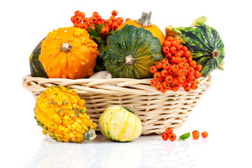 Autumn pumpkins in a straw basket, isolated on the white backgro