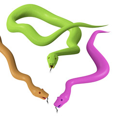 Three different snakes