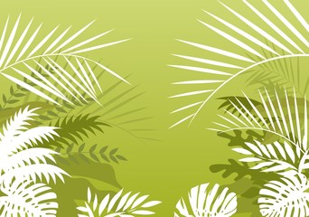 tropical palm background
