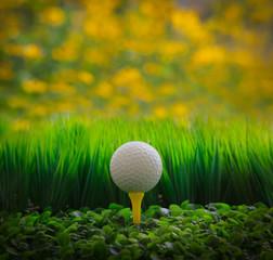 golf ball on green grass field and yellow blur background
