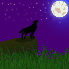 Wolf howls at the moon at night