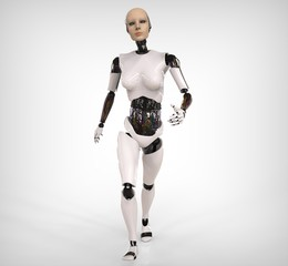 Humanoid Walking
