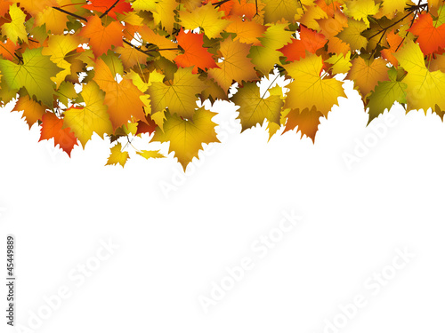 Herbst Herbstblätter Blätter Hintergrund Vorlage Postkarte