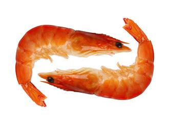 two shrimp