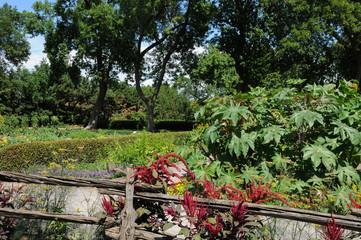 Canada, the Botanical Garden of Montreal