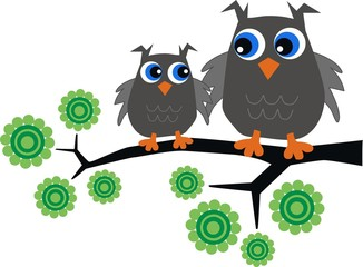 two grey owls