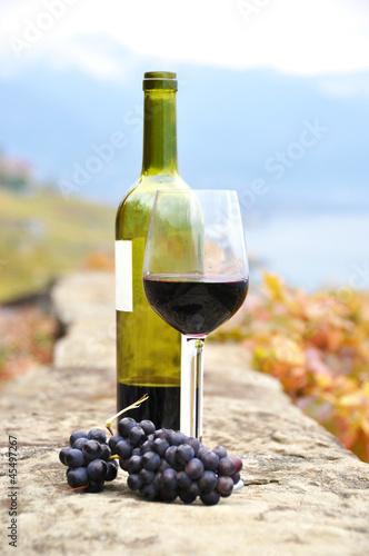Белое вино из красных сортов винограда