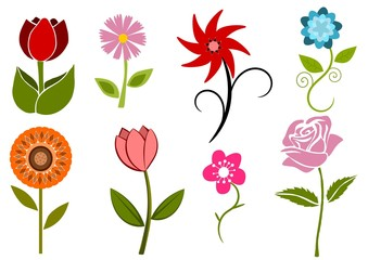 Collection of 8 different abstract flowers