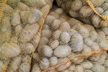 Sacks of fresh new potatoes