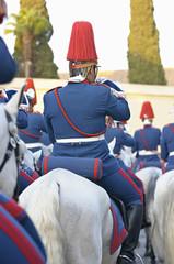 Guardia en desfile a caballo