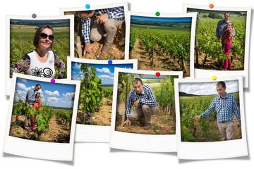 souvenirs dans les vignes