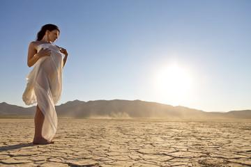 Desert Model