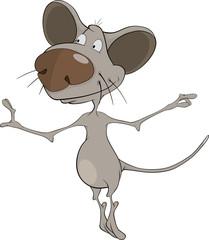 House mouse. Cartoon