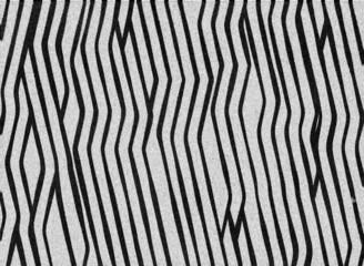background zebra skin pattern