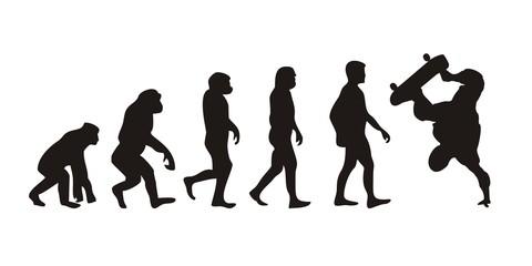 Vom Affen zum Skater (Menschen)