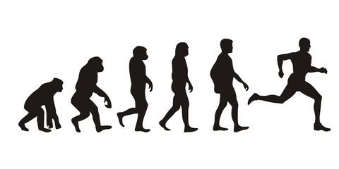 Vom Affen zum Läufer (Menschen)