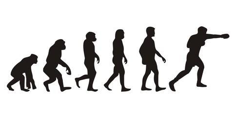 Vom Affen zum Boxer (Menschen)