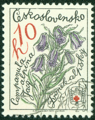 Stamp shows image of a Alpine Bellflowers
