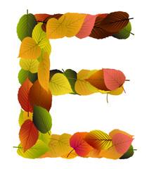 Buchstabe aus Blättern - E