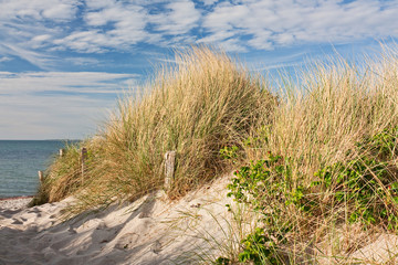 Fototapete - Weg zum Strand durch Dünen bei Heiligenhafen an der Ostsee