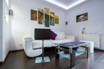 Modern lliving room interior with Cliffs of Moher picture