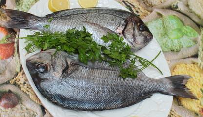 Il pesce per la cena