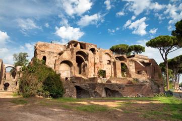 Fotomurales - Ancient Domus Severiana at Monte Palatino - Roma - Italy