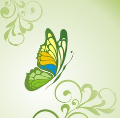 Abstract flora background with butterfly