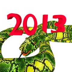 One big snake and 2013