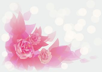 flowers ,roses , postcard .