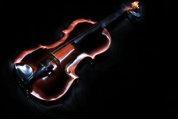 Violin in Light