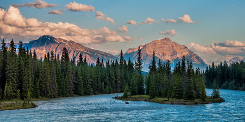 Fototapete - Forest and Mountains Behind the Athabasca River
