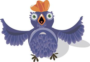 silly bird with round eyes