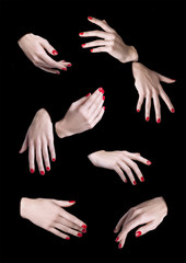 eight woman hands isolated, 8 manos mujer aislado