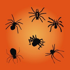 Halloween ~ Spinnen ~ Krabbeltiere - Megaset