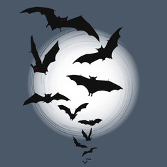 Halloween background - flying bats in full moon