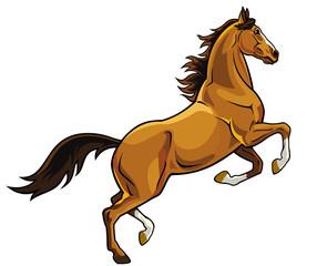 rearing brown horse