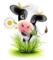 Photo sur Plexiglas Ferme Holstein cow in grass