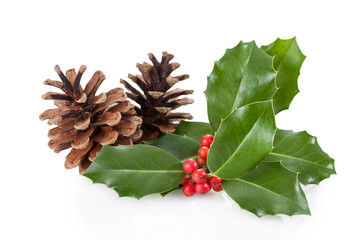 Wall Mural - Christmas decoration of holly berry and pine cone