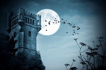 Fotobehang Volle maan halloween, castillo con luna, noche