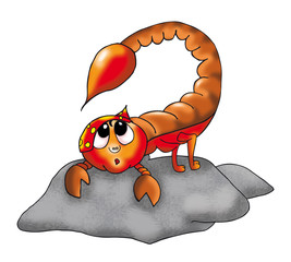 Skorpion einzeln