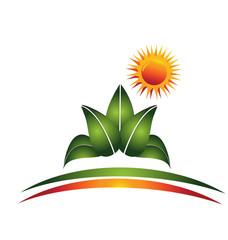 Plant and sun logo vector
