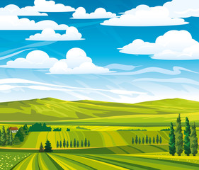 Summer landscape with green meadows