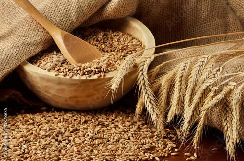 wheat sacks - HD2880×1800