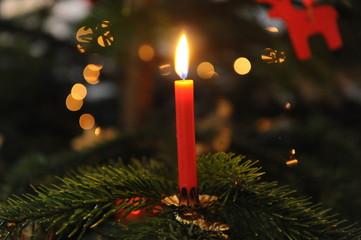 brennende Christbaumkerze auf einem Christbaumzweig 1