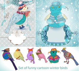 Set of funny cartoon winter birds