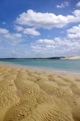 Le banc d'Arguin et la dune du pyla